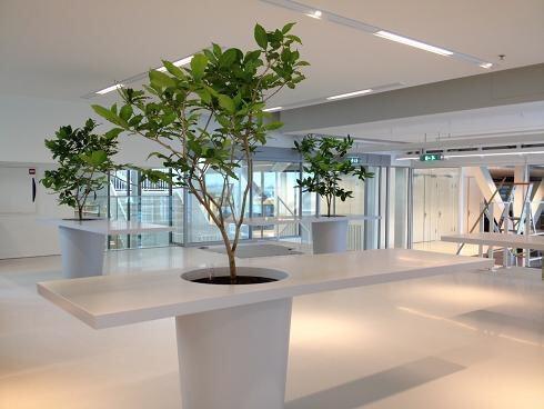 Van ginkel interieurbeplanting streeft samen met de lely for Interieur beplanting
