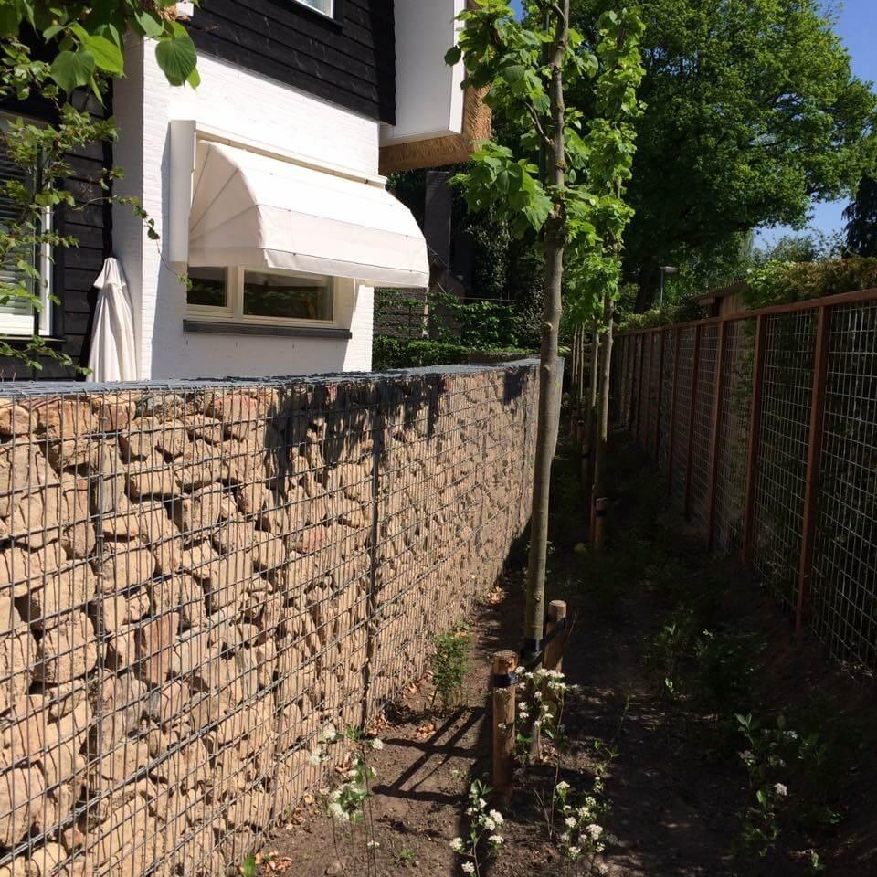 Daktuinen Dakterrassen: Aanleg (dak)tuinen Appartementencomplex
