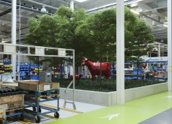 Interieurbeplanting Lely