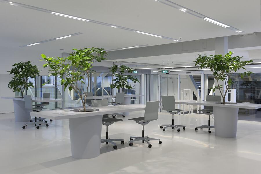 Interieurbeplanting lely campus maassluis ginkel groep for Interieur beplanting