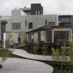 Natuurontwikkeling De Ceuvel