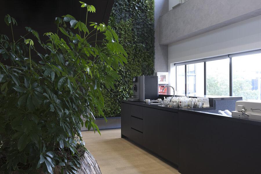 Interieurbeplanting ebn koninklijke ginkel groep for Interieur beplanting