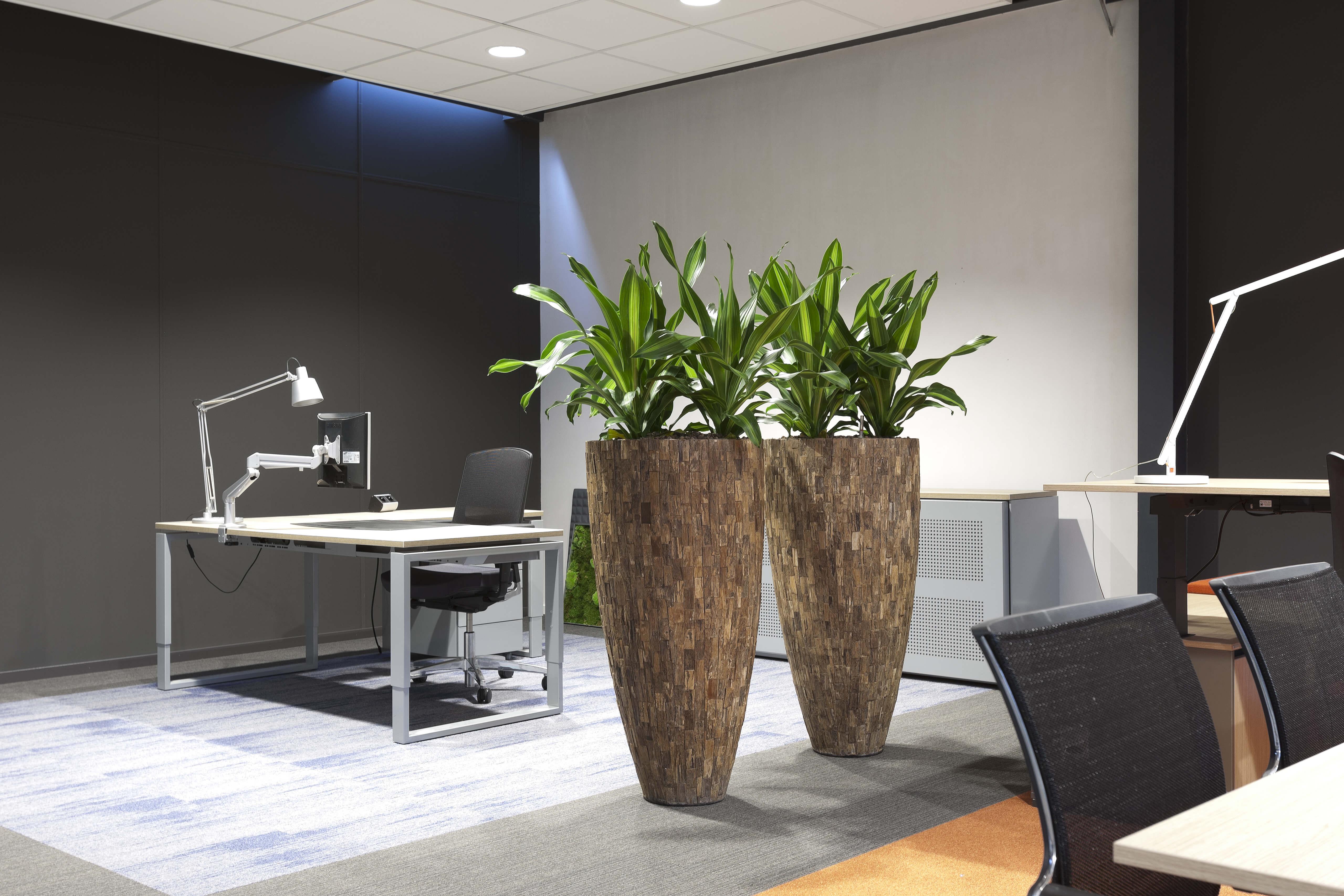 interieurbeplanting bij kantoorspecialist ginkel groep
