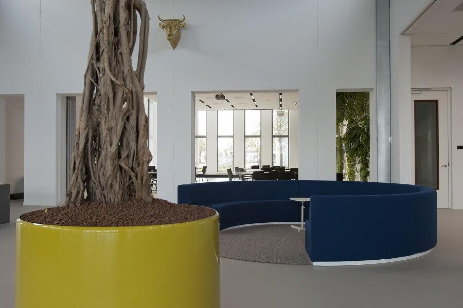 Interieurbeplanting dome x te oss hoveniersbedrijf for Interieur beplanting