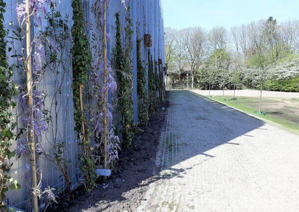 Groenste transferium Transferium Nederland - De Koninklijke Ginkel Groep